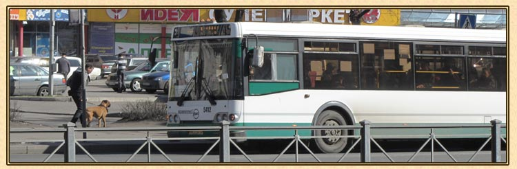 Общественный транспорт.Санкт-Петербург.