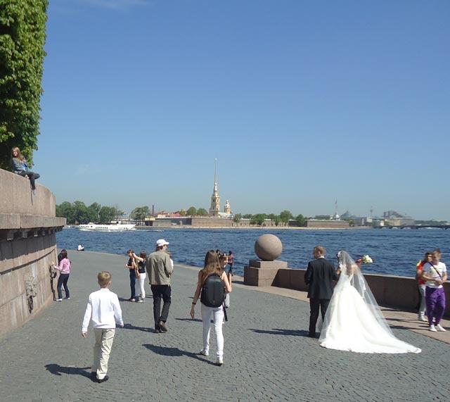Фото свадьбы на васильевском острове 75